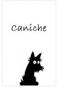 Caniche-doggy-planning.jpg