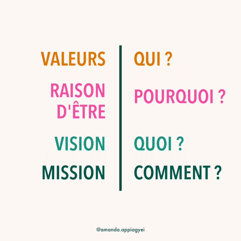 Vision-mission-purpose-values-graphic fr.png